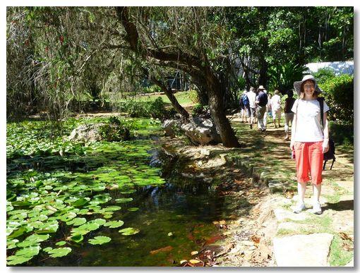 Cuba botanical gardens for Jardin botanico nacional